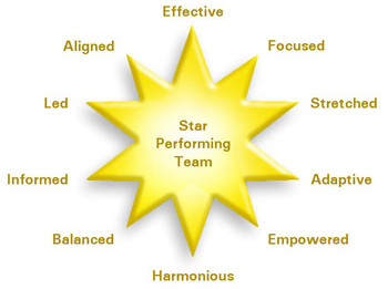Star Performing Team Model